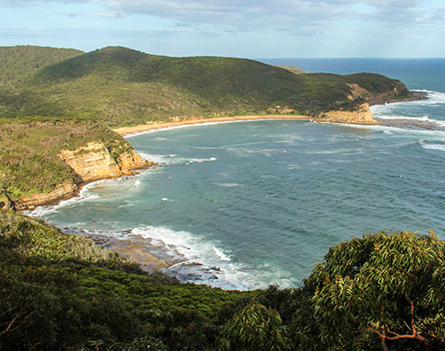 Bouddi National Park - Bulimah Spur track - photo John Yurasek