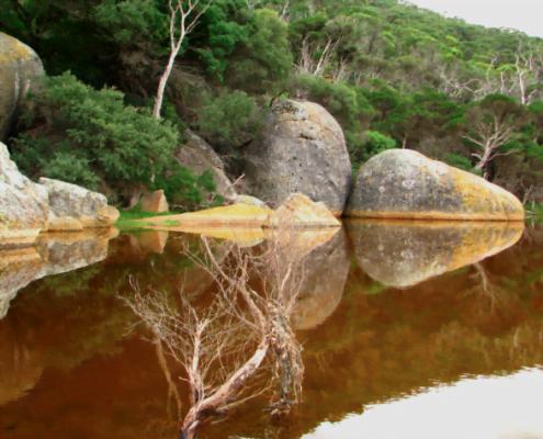 Tidal River Wilson's Promontory