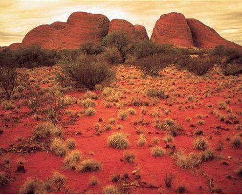 Kata Tjuta, The Olgas, Northern Territory