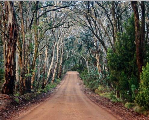 West region of NSW - David Gordon